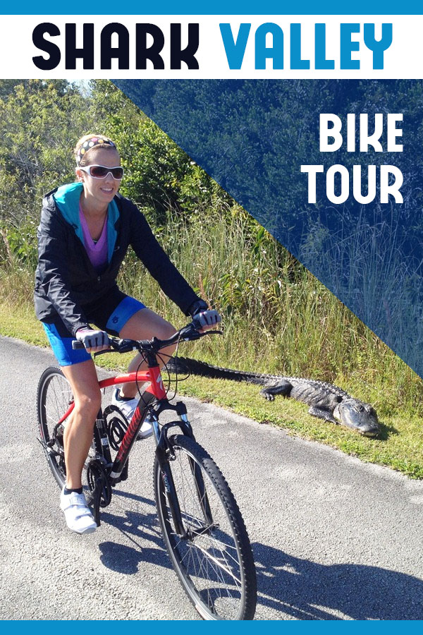 Shark Valley Bike Tour - a great Everglades tour for a Florida vacation