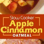 Slow Cooker Oatmeal: Apple Cinnamon