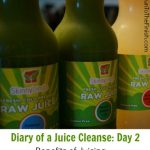 Diary of a Juice Cleanse – Day 2 Benefits