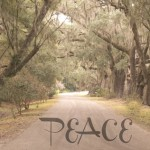 One Word Resolution: Peace