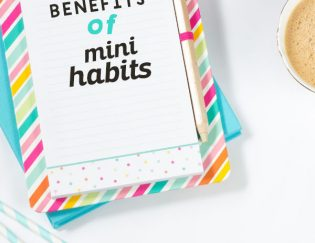 Mini Habits – Doing Less to Achieve More