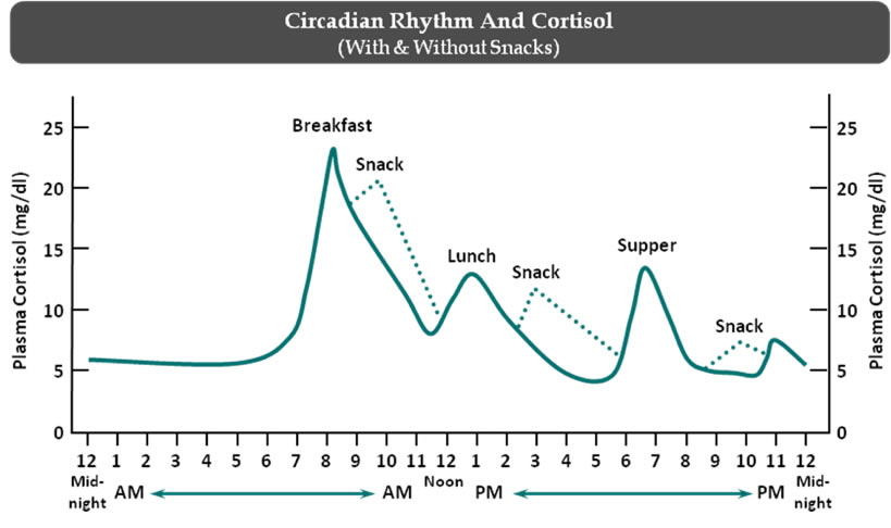 What a normal cortisol cycle looks like