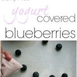 Frozen Yogurt Covered Blueberries–Dairy Free Summer Snack