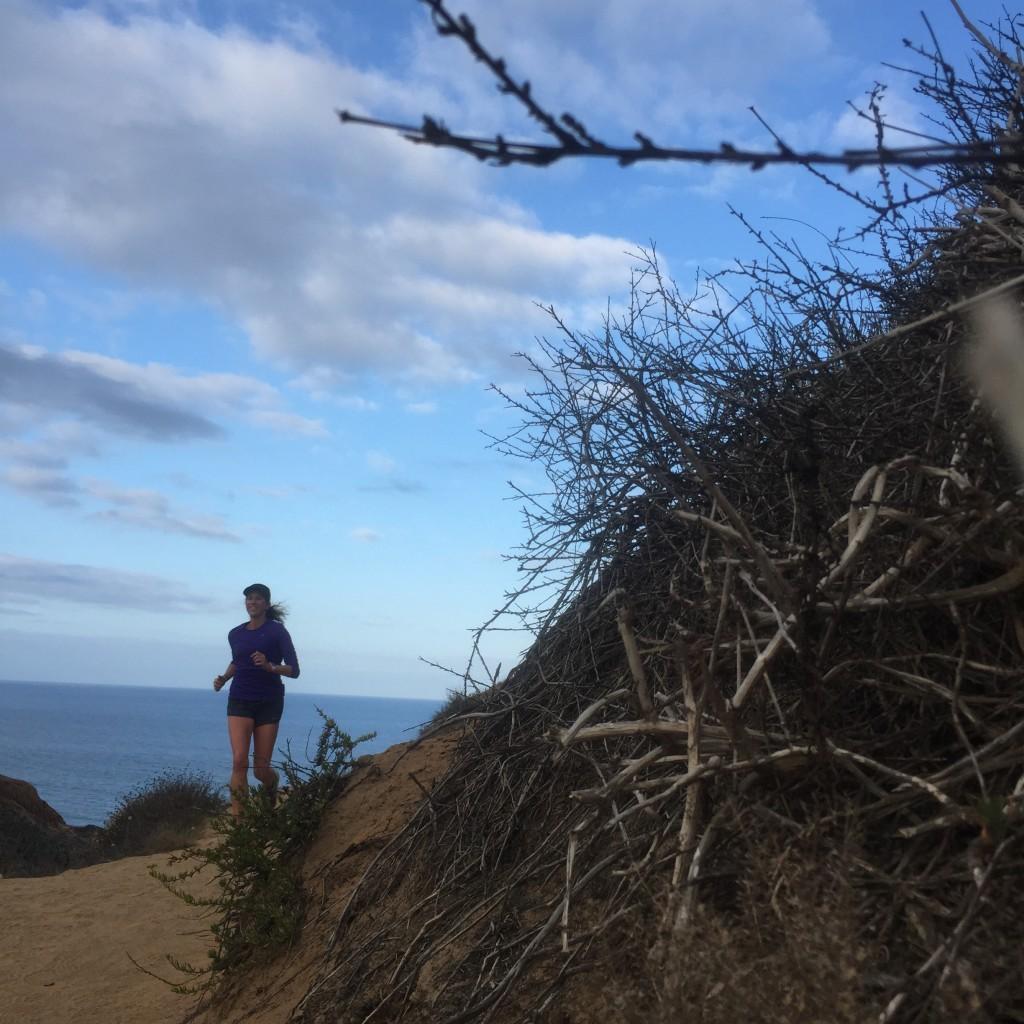Torrey Pines Trail Running