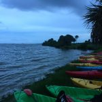 Bioluminescent Florida Kayak Tour: Glowing Water and Sky Adventure