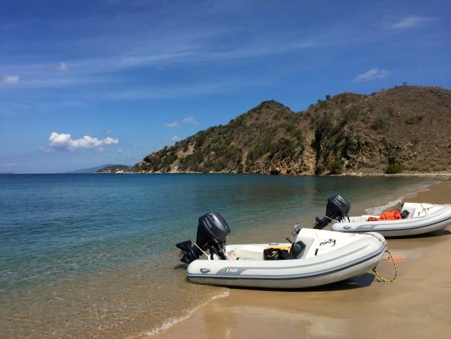 Jet boat tour in Tortola
