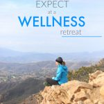 Wellfit Malibu Fitness Retreat Review