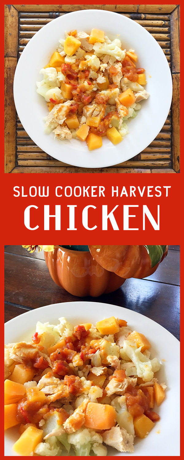 Slow Cooker Chicken Recipe - Easy, Dairy Free, Gluten Free, Fall flavors, squash, cauliflower and plenty of options.