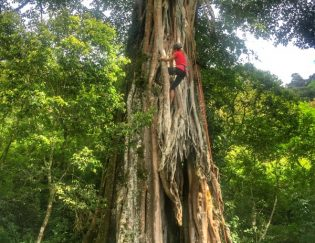 Tree climbing in Costa Rica adventure vacation
