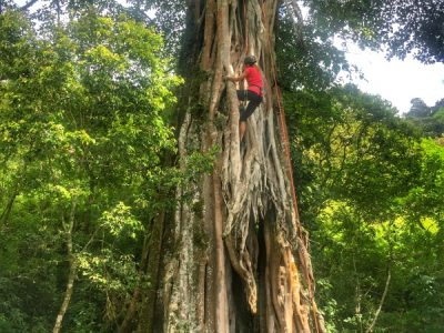 Tree climbing in Costa Rica adventure vacation