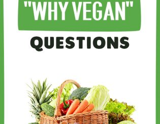 Considering Going Vegan? A Must Read Guide for Plant Based Athletes