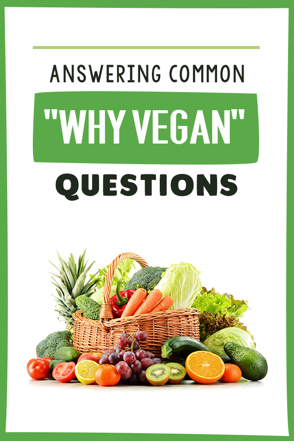 Answering Common Why Vegan Questions