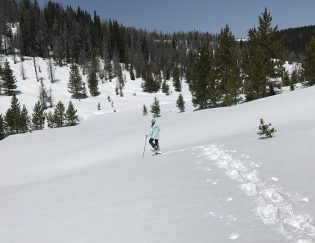 snowshoe tips