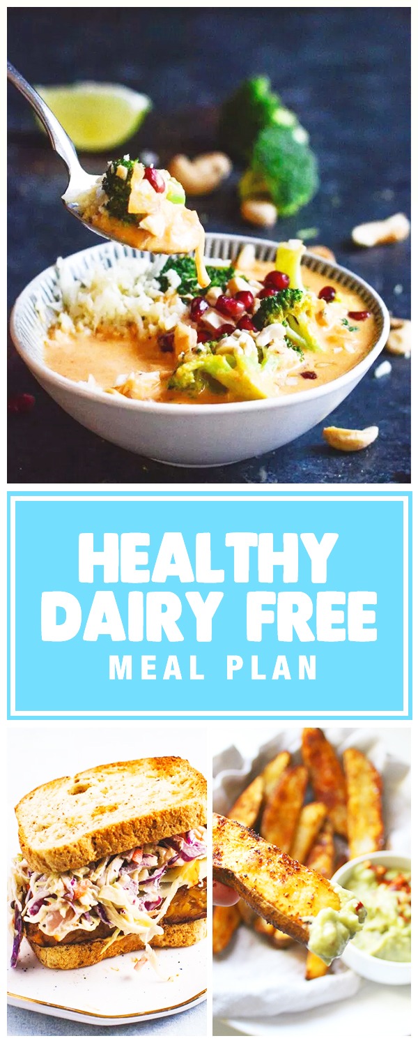 HIgh Protein Healthy Dairy Free Meal Ideas