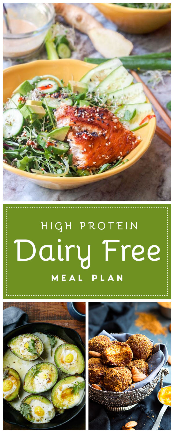 high protein dairy free