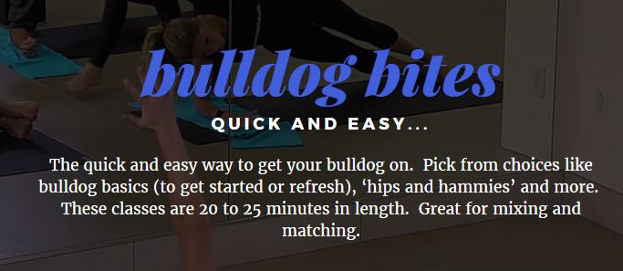 Bulldog yoga online