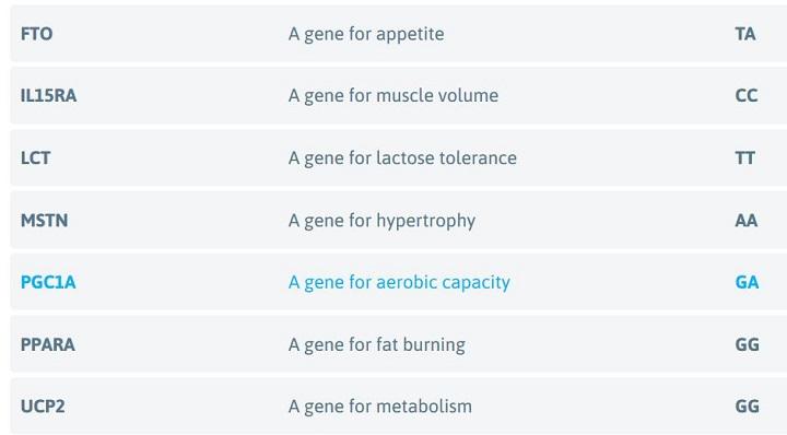 understanding genes