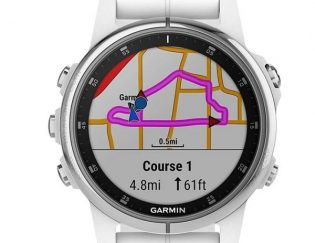garmin fenix maps