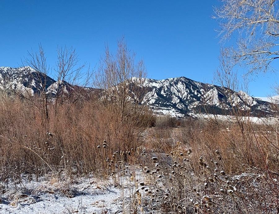 Bobolink Trail in Boulder